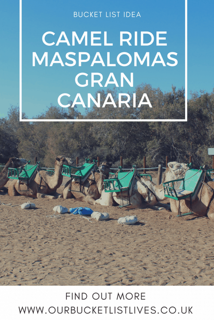 Camel ride in Maspalomas, Gran Canaria - bucket list tick