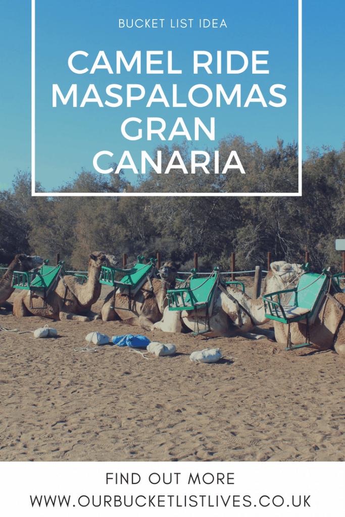 Camel ride in Maspalomas, Gran Canaria - bucket list tick