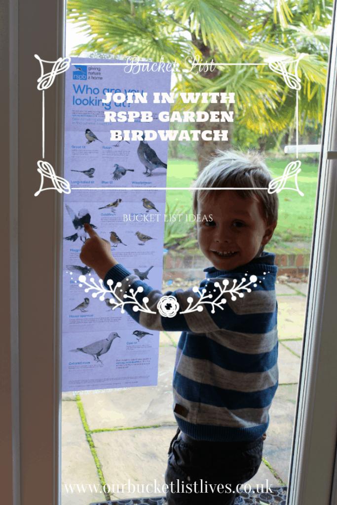 RSPB Big garden birdwatch teaching kids about garden birds, bucket list idea