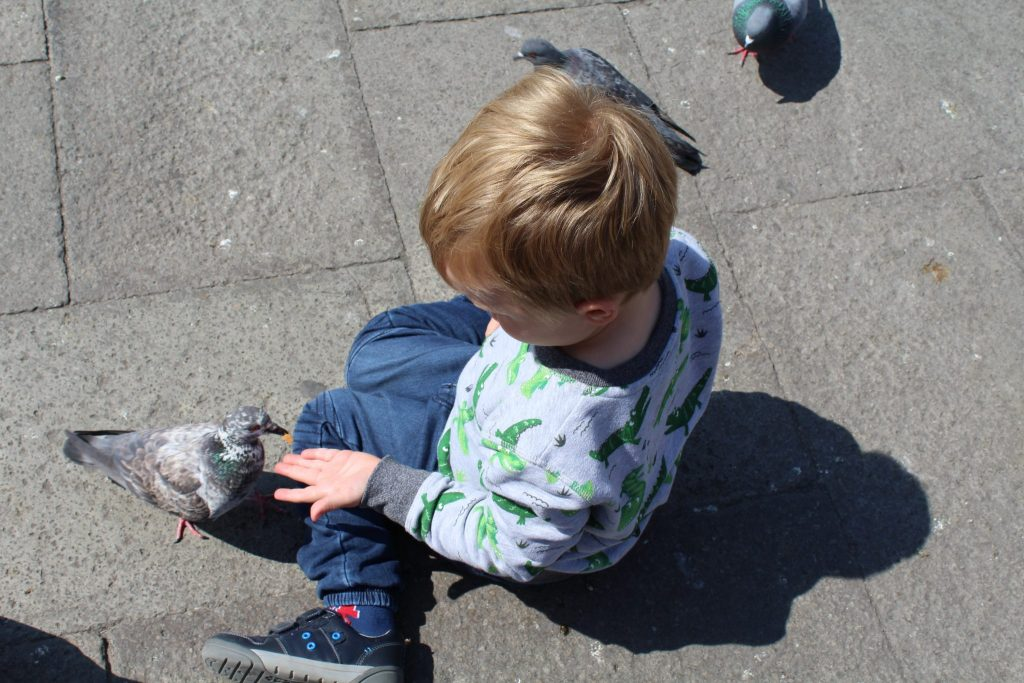 Feeding Pigeons Piazzo San Marco