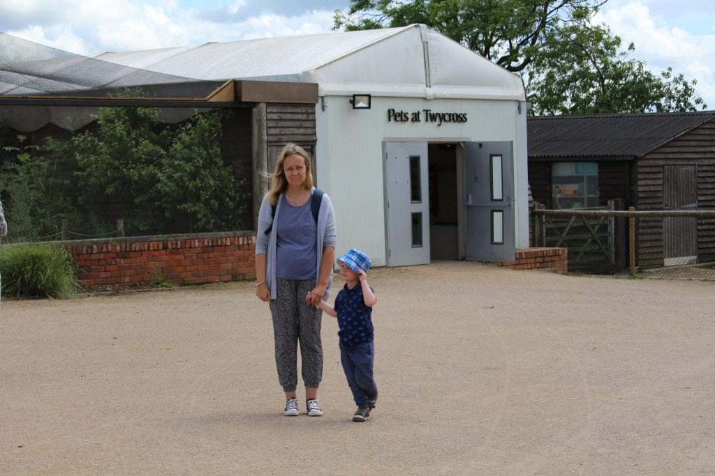 Top 15 things To Do and See at Twycross Zoo, Leicestershire