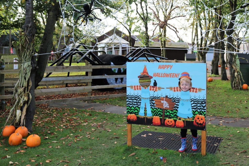 Halloween at White Post Fun - Fun Day Out in Nottinghamshire