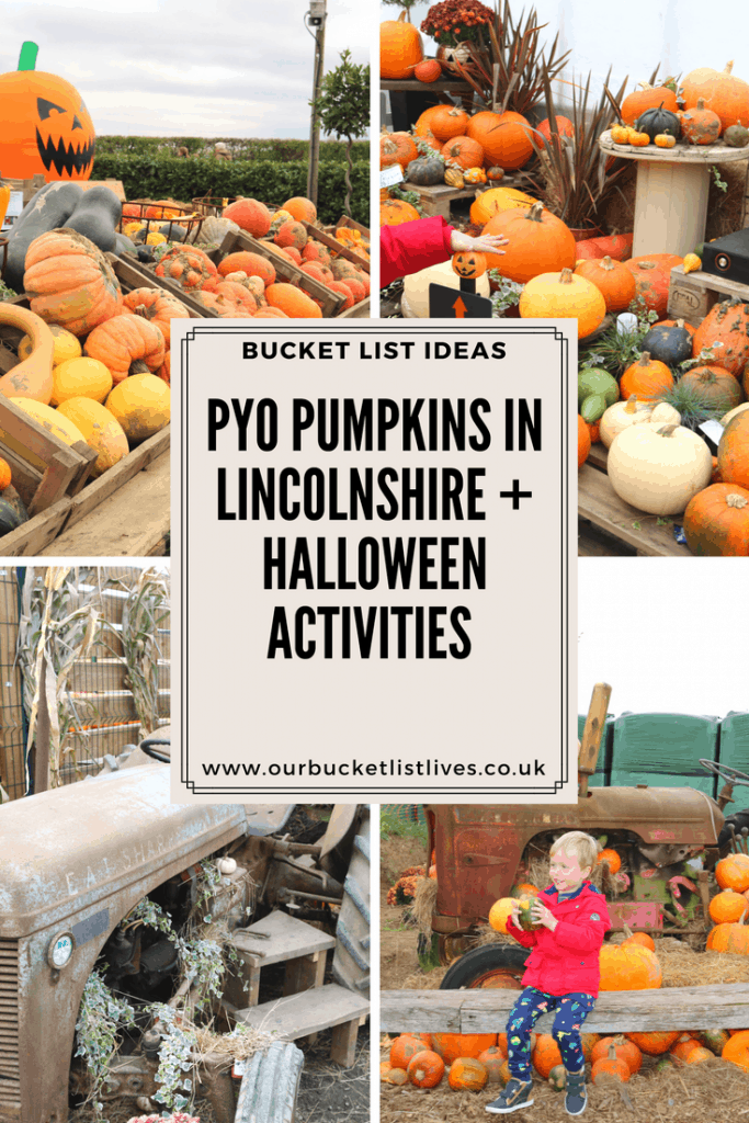 PYO Pumpkins in Lincolnshire + Halloween Activities - Bell's Gardening Outlet