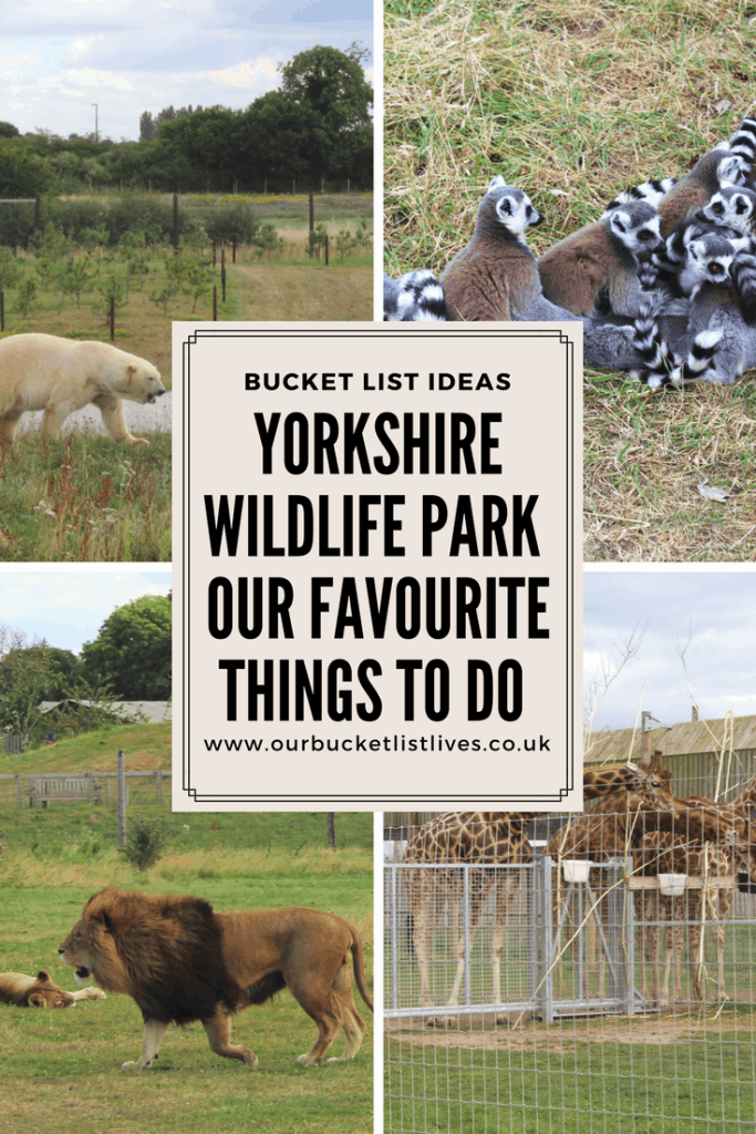 Yorkshire Wildlife Park - Our Favourite things to do - Family Day out