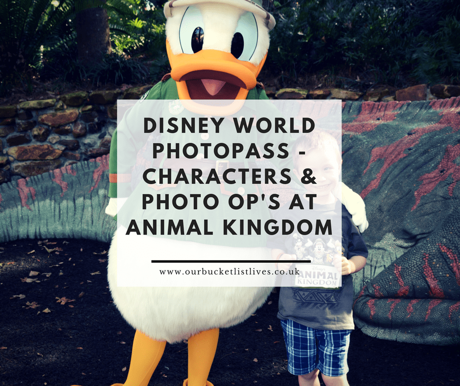 Disney World Photopass Characters Amp Photo Op S At Animal