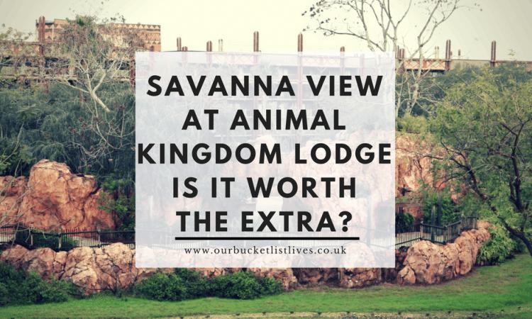 Savanna View at Animal Kingdom Lodge | Is it Worth the Extra?