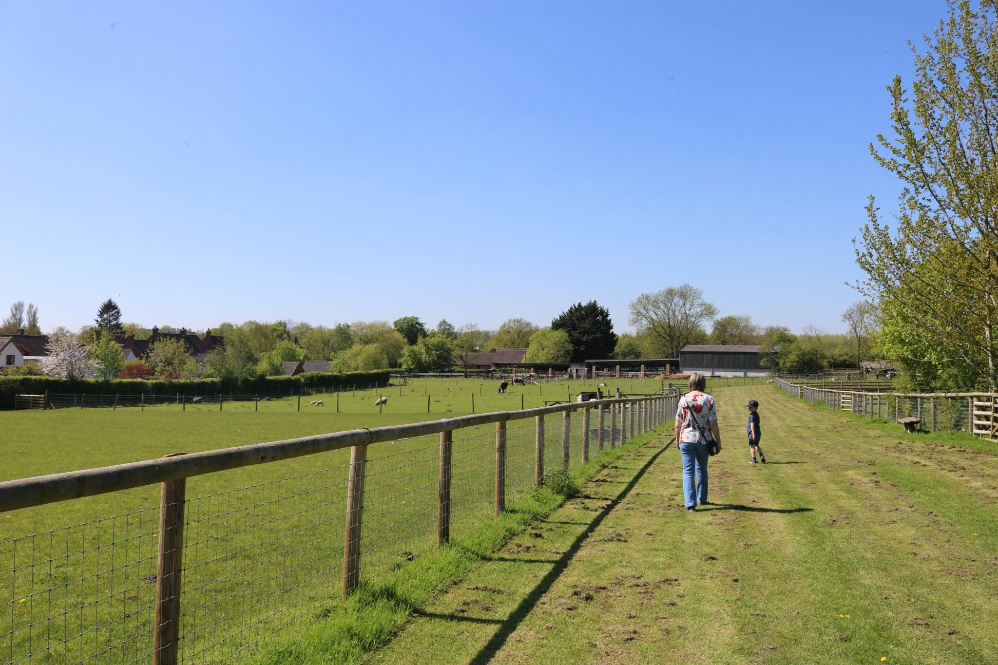 Mary Arden's Farm near Stratford-Upon-Avon | Family Friendly Day Out