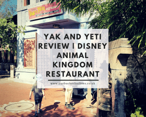 Yak and Yeti Review | Disney Animal Kingdom Restaurant
