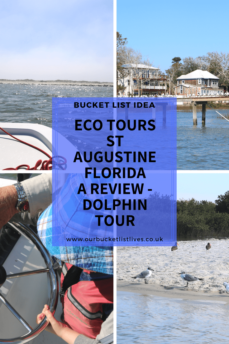 Eco Tours St Augustine Florida | A Review - Dolphin Tour