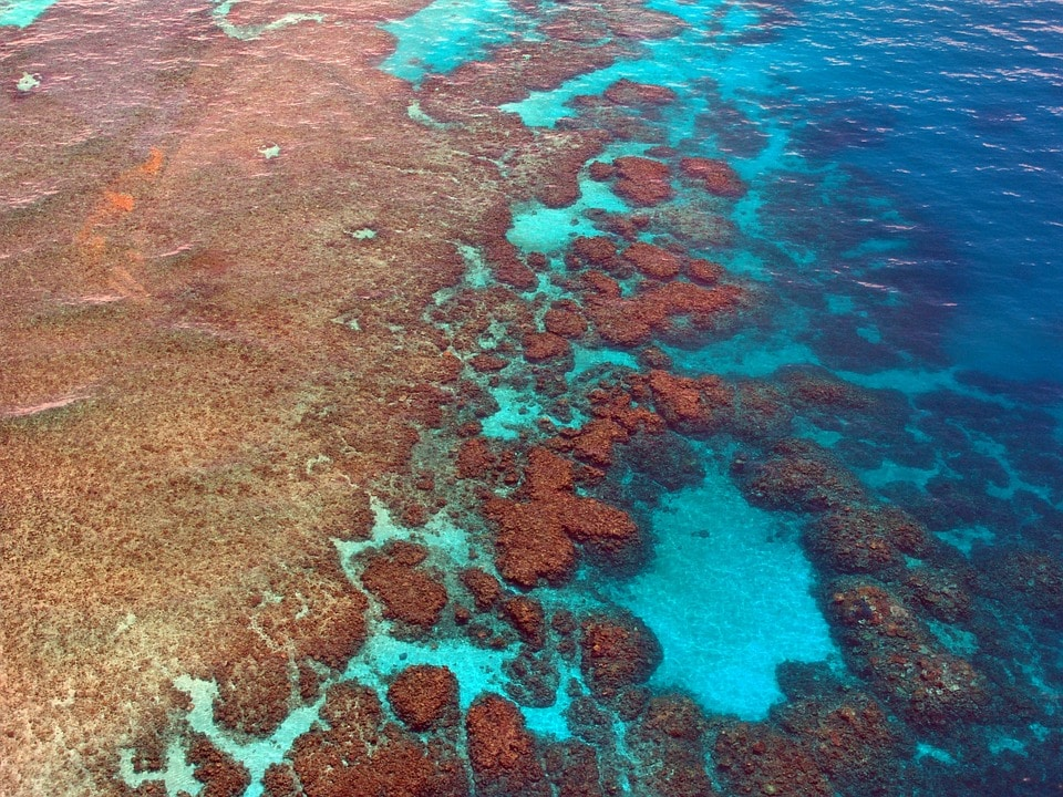 Birds eye view great barrier reef