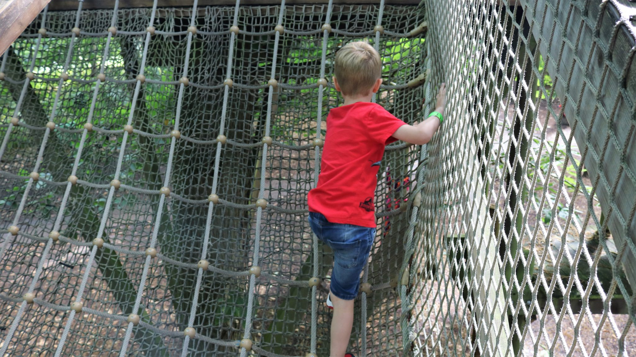 Climbing up the cargo net