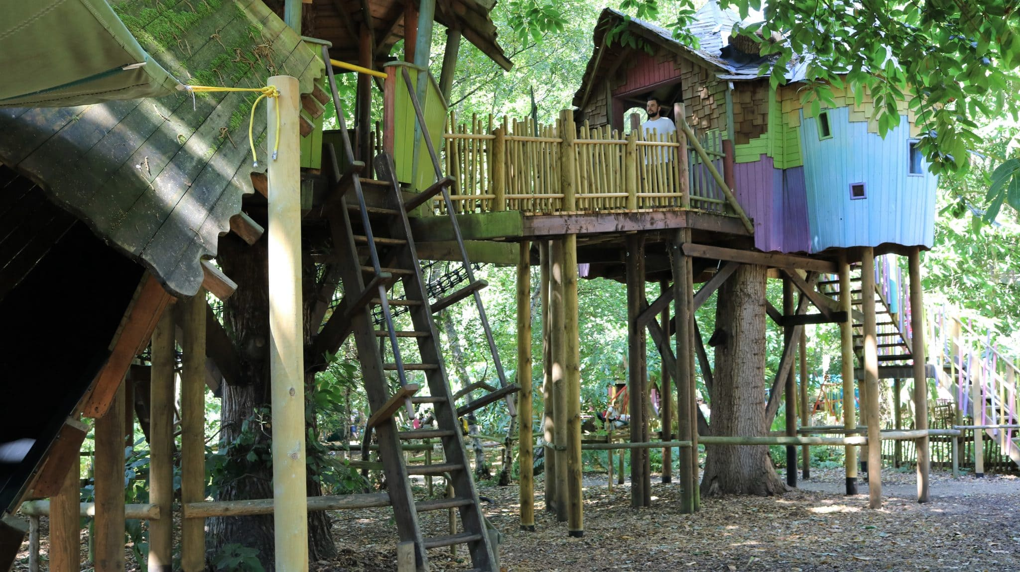 Tree house with a really fun slide