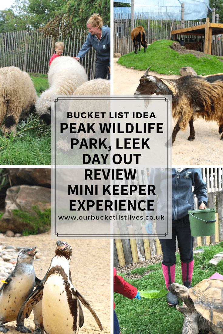 Peak Wildlife Park Leek | Day Out Review | Mini Keeper Experience