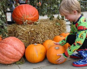 30 + Best Halloween Events East Midlands 2018 | Things to do