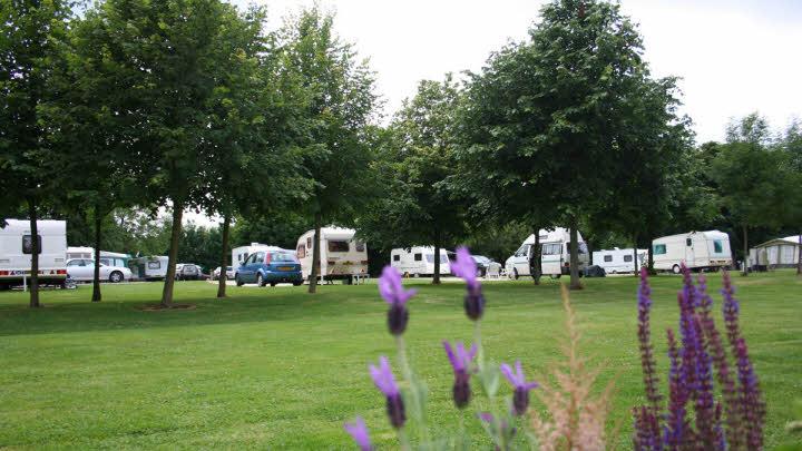 Cirencester Park, photo courtesy Caravan Club