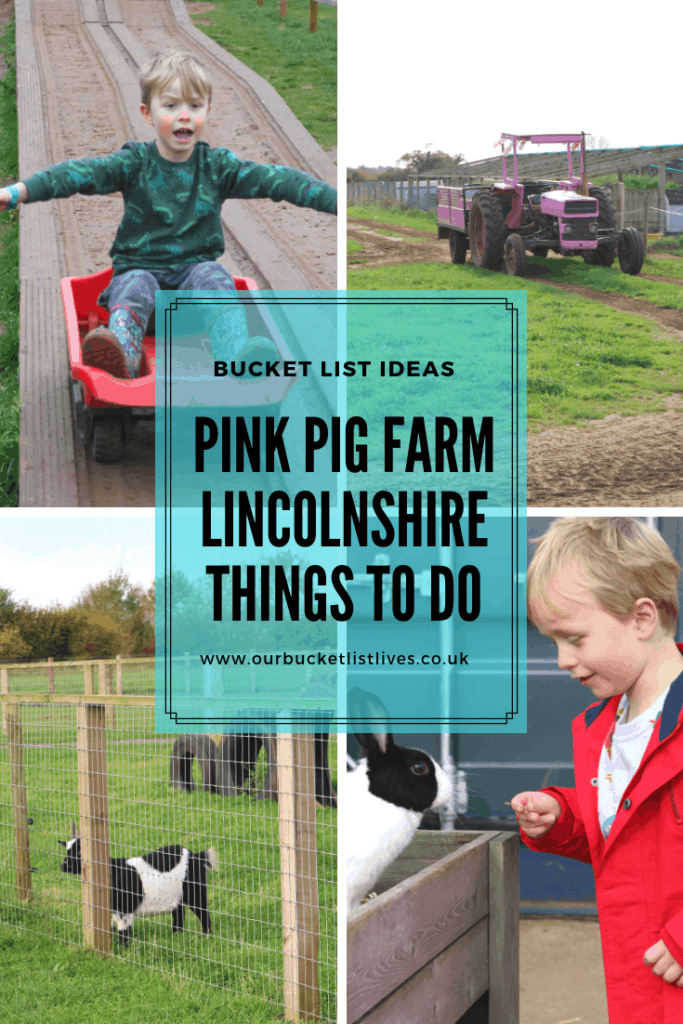 Pink Pig Farm Scunthorpe Review - DAY 1 #80dayschallenge