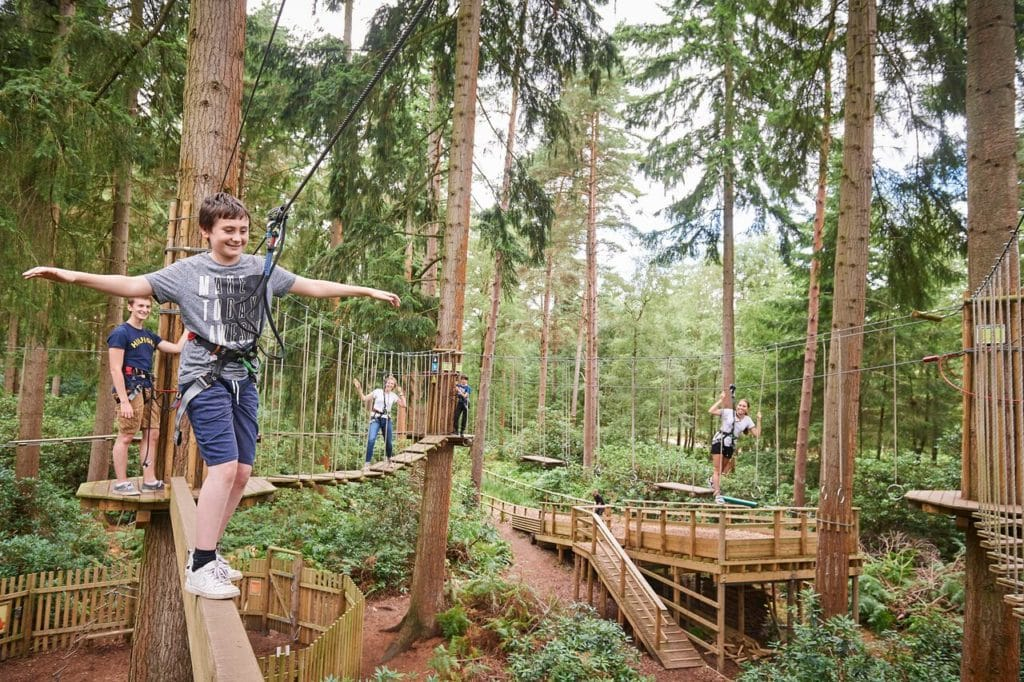 Go Ape Tree Top Adventure | Locations & Discount