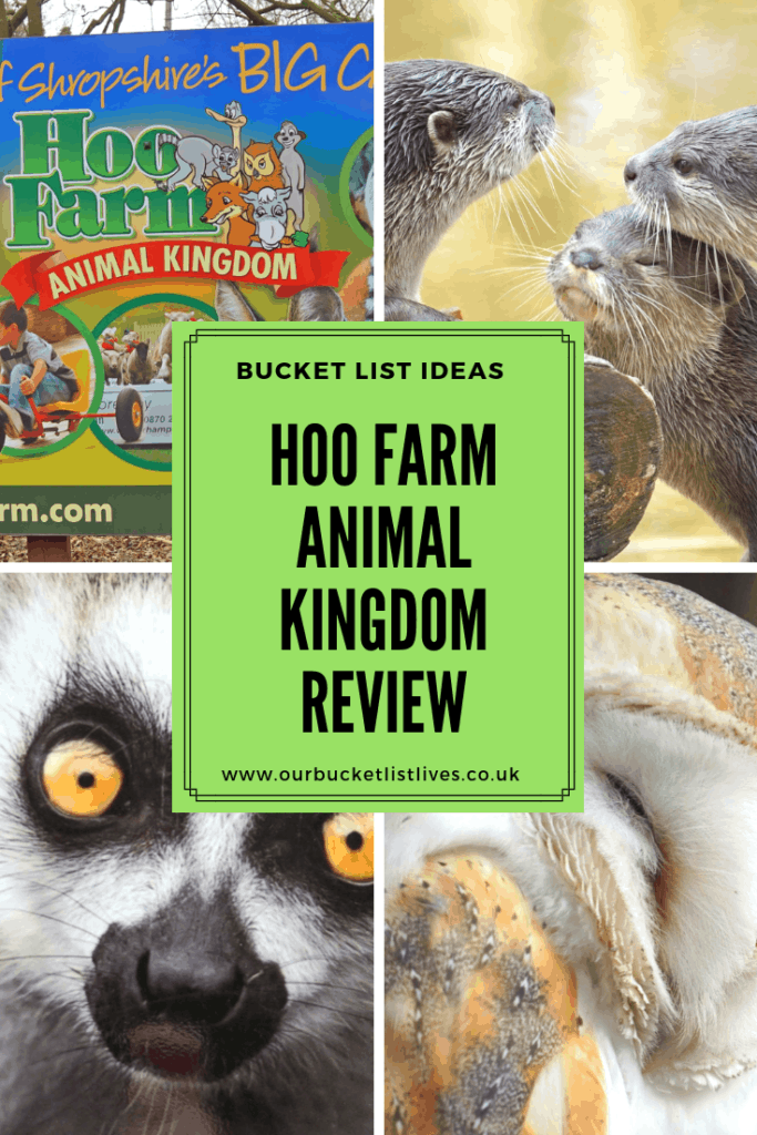 Hoo Farm Animal Kingdom Review