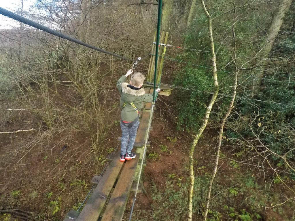 Go Ape Dalby Forest | Tree Top Junior Review