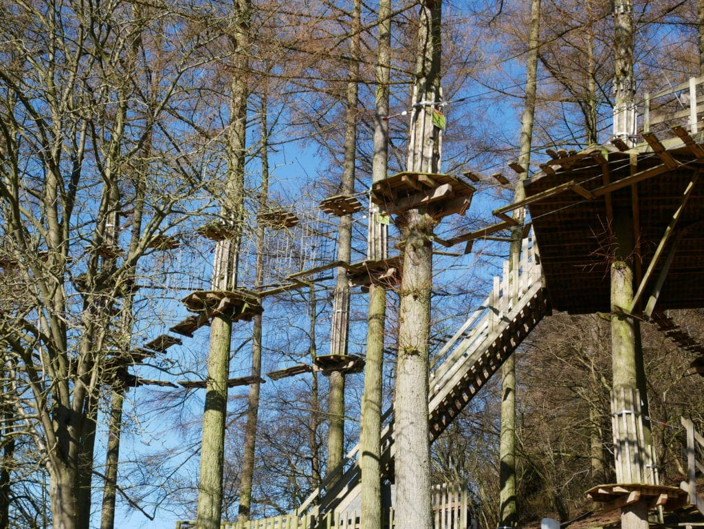 Go Ape Dalby Forest - Tree Top Junior course