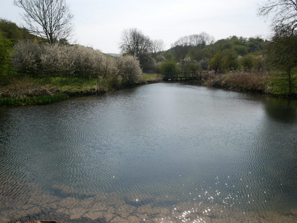 The Lake at Wharram Percy