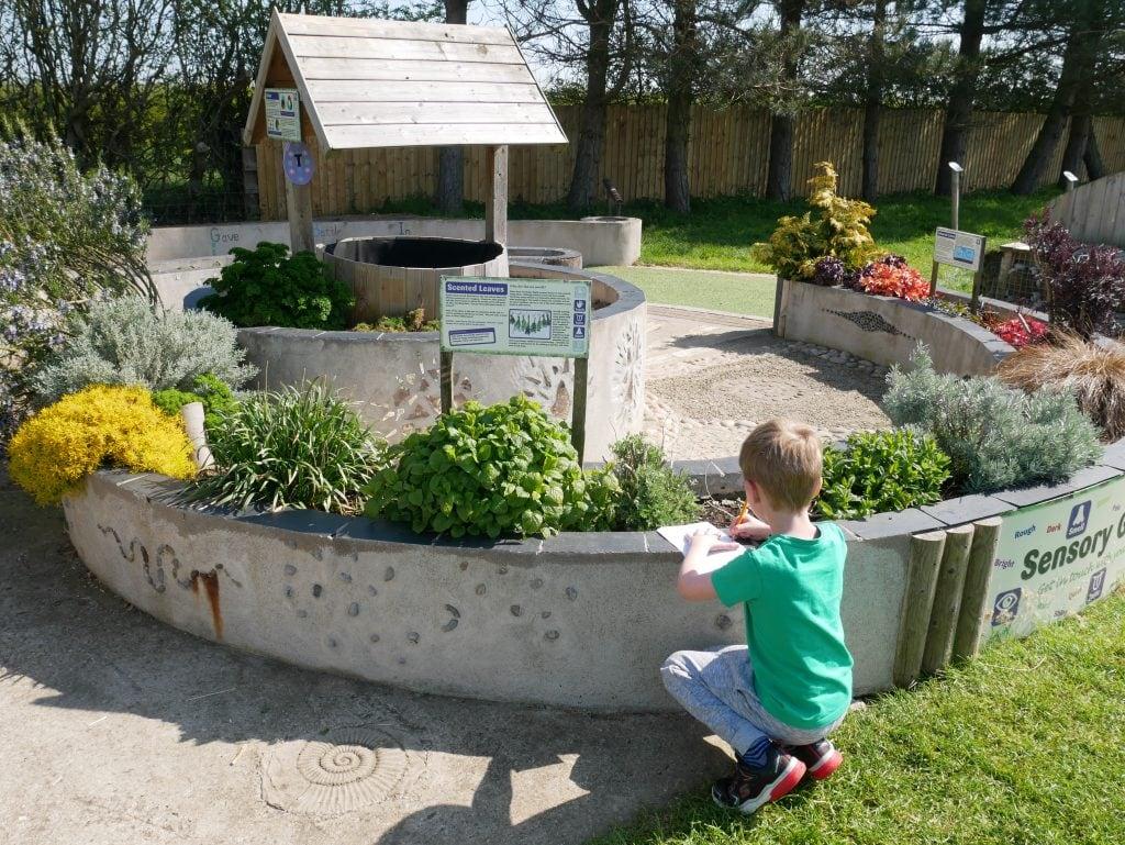 Filey Bird Garden and Animal Park review