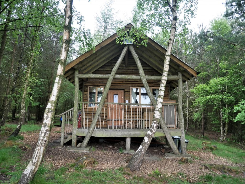 Swinton Bivouac A Magical Tree Lodge Stay | Posh Glamping in North Yorkshire