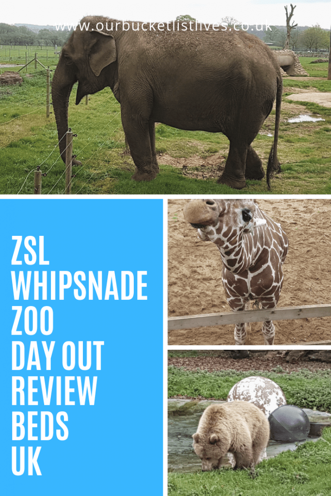 ZSL Whipsnade Zoo | Day Out Review | Bedfordshire