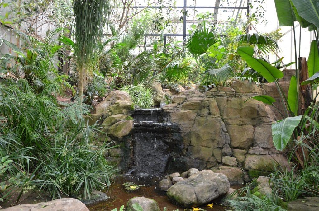 Reptile Tropics house