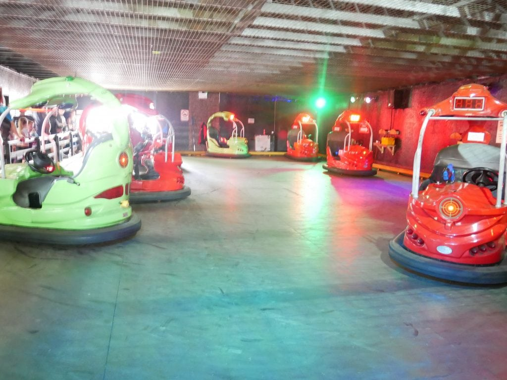 Safari Dodgems