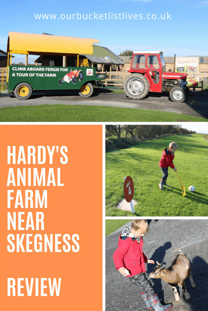Hardy's Animal Farm near Skegness | Day Out Review