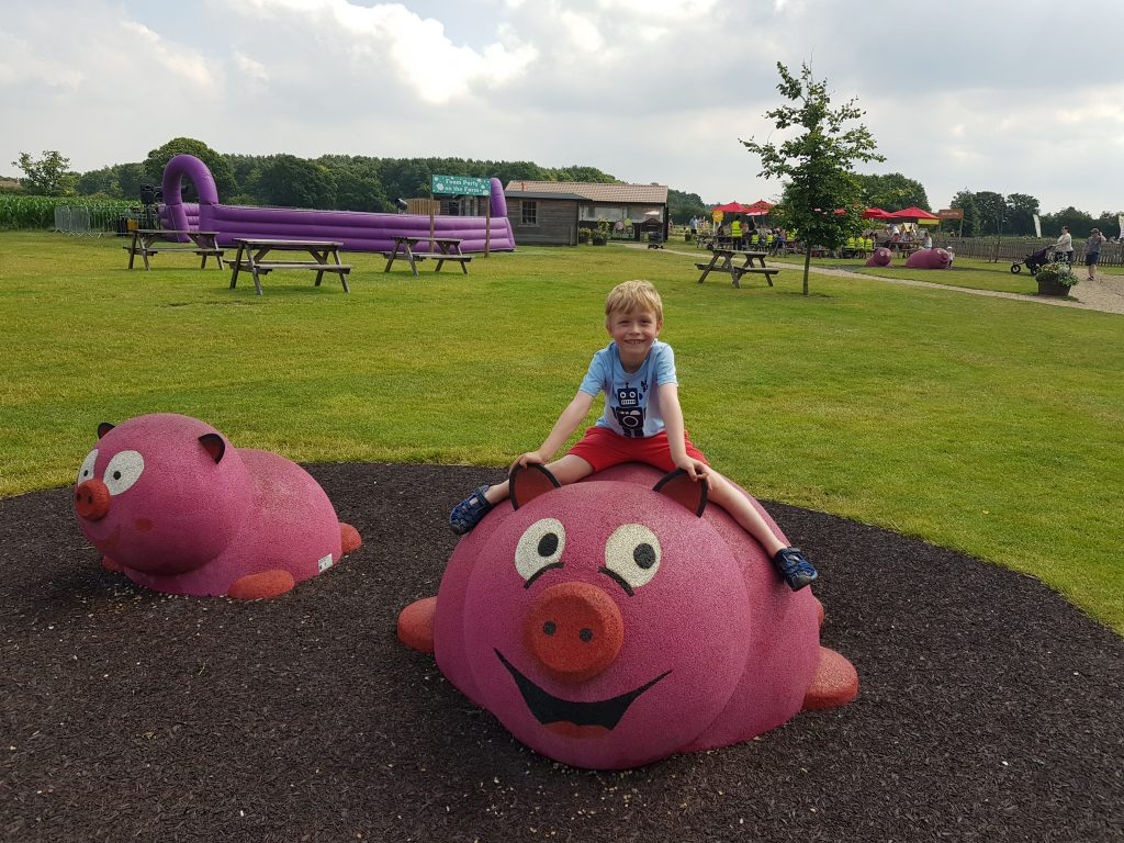 Piglets Adventure Farm Review near York | The Beach at Piglets
