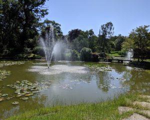 Cliveden Water Gardens