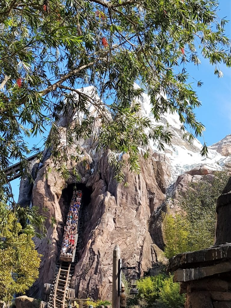 The Best Ride at Disney World - Expedition Everest