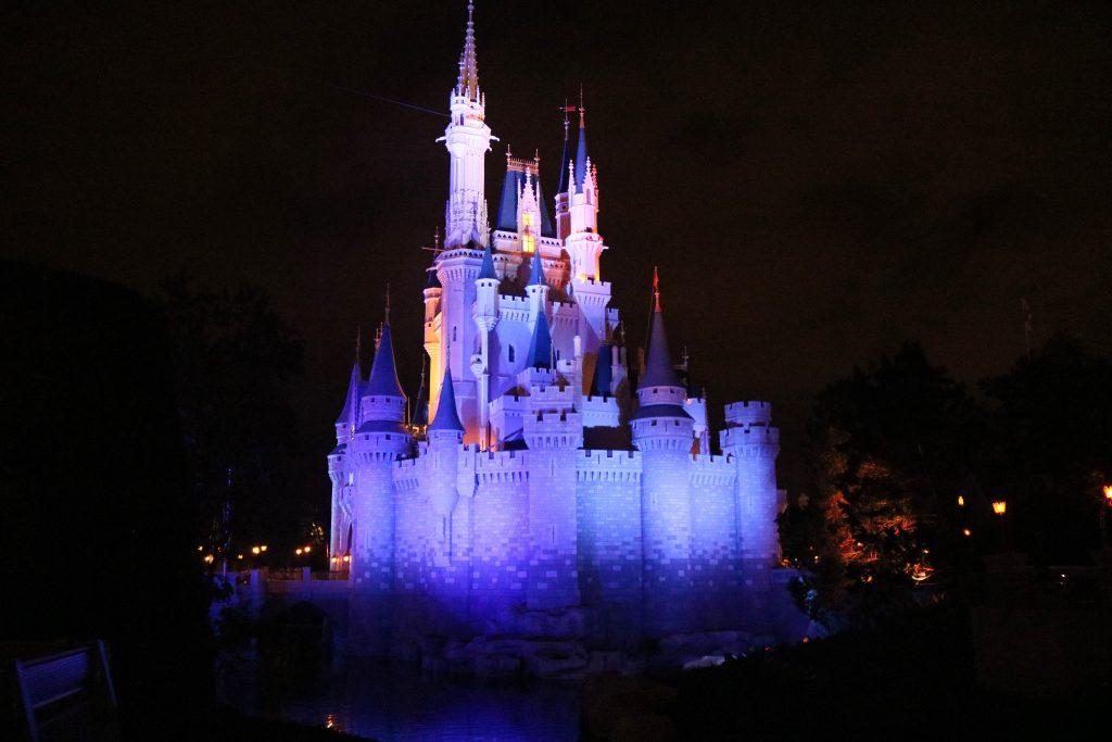 Enjoying Magic Kingdom by night