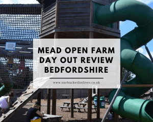Mead Open Farm Day Out Review | Bedfordshire