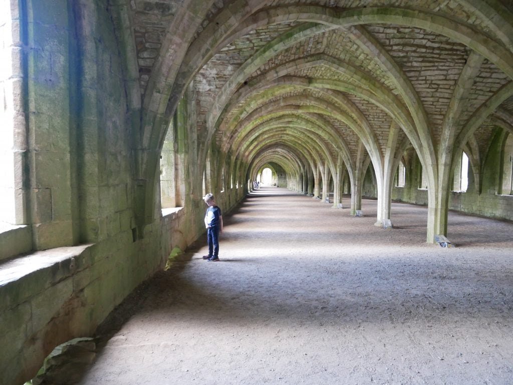The Cellarium