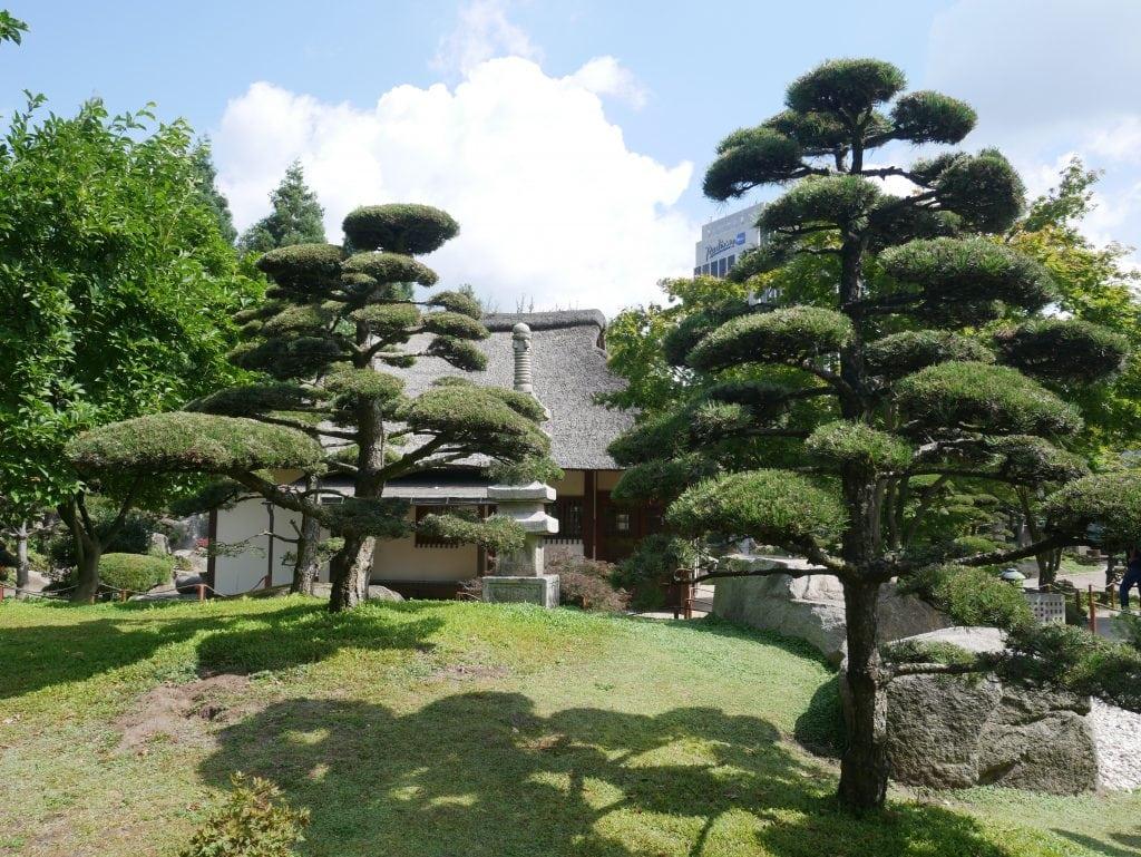 The beautiful Japanese garden