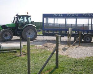 Hall Farm Park