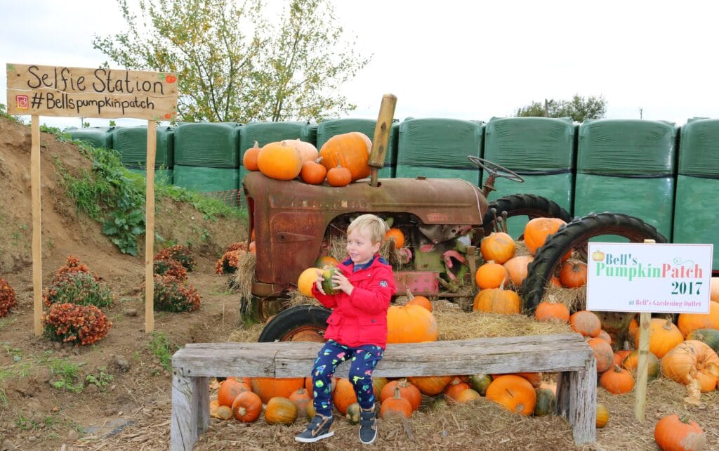 30 + Best Halloween Events East Midlands 2020 | Things to do