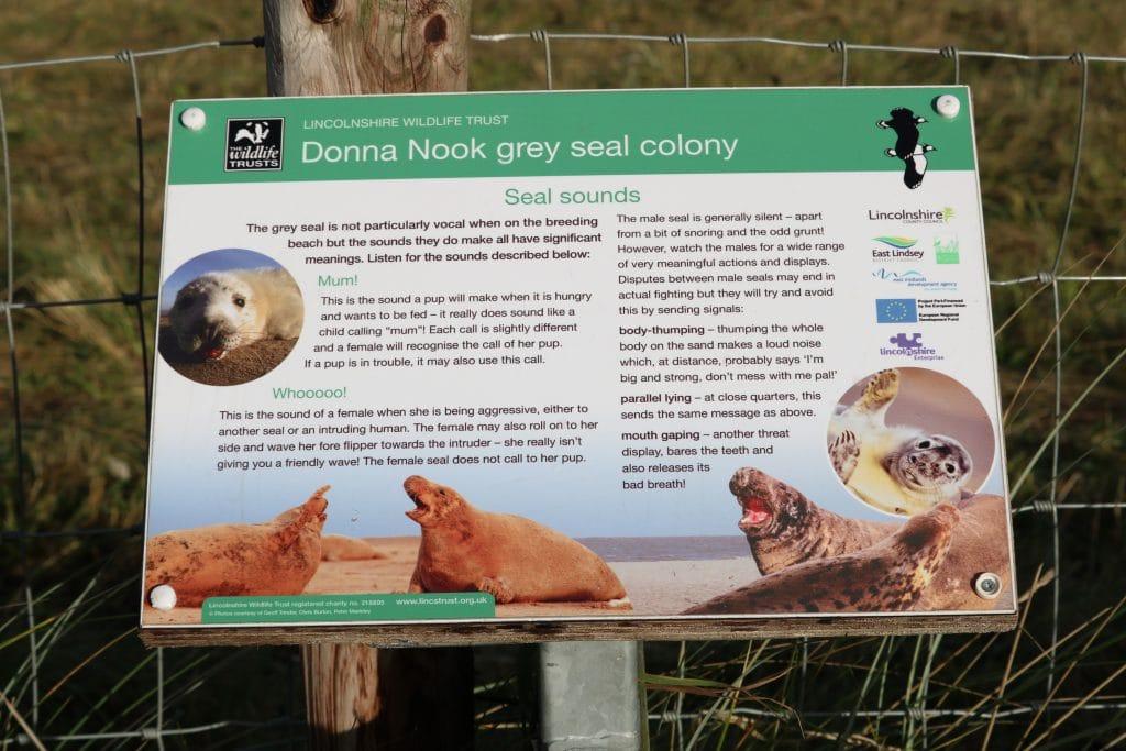 Donna Nook Nature Reserve