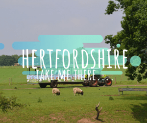 things to do Hertfordshire