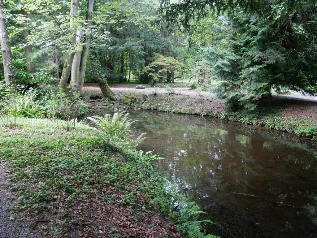 Featured image for Thorp Perrow Arboretum and Wildlife Park
