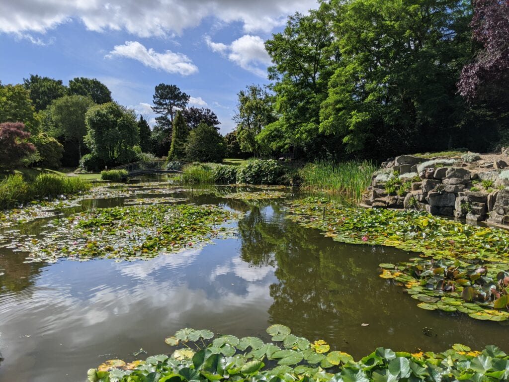 Featured image for Burnby Hall Gardens