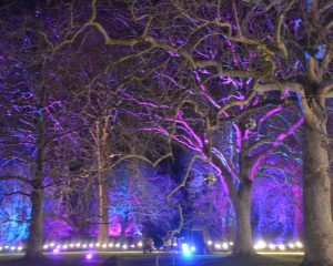 Enchanted Audley End Review | English Heritage Enchanted Eventsv