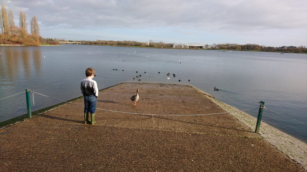Featured image for Willen Lake