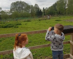 Gentleshaw Wildlife Centre