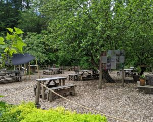 Falling Foss Tea Garden