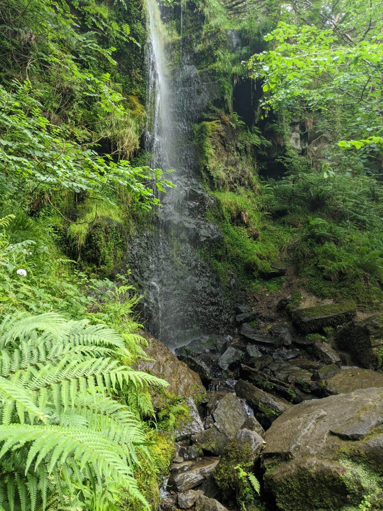 Mallyan Spout to Thomason Foss, Beck Hole Walk with Kids