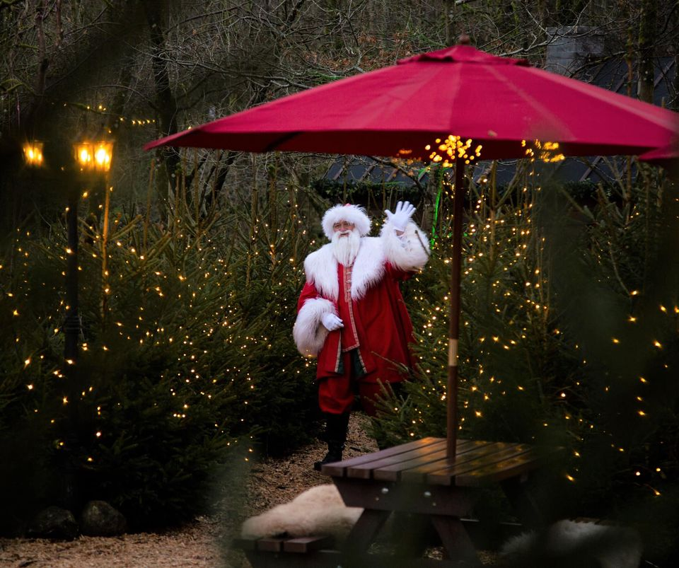 25 Best Christmas Events East Yorkshire North Yorkshire